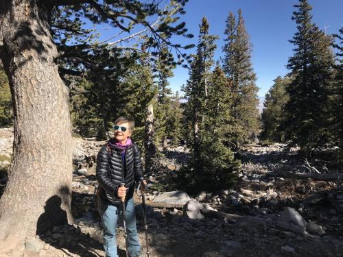 Great Basin National Park 2019